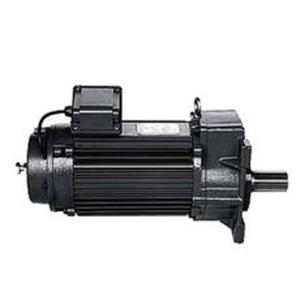 Gear Motor - Open Pinion Type